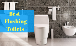 Best Flushing Toilets
