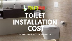 How Much Does It Cost To Install a Toilet