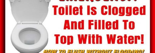 How to Unclog a Toilet without a Plunger in 5 Ways