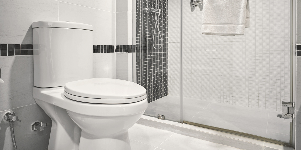 image of toilet and shower, to answer can a toilet and shower share the same drain
