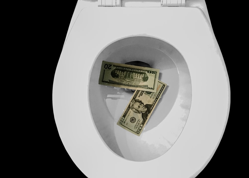 money-in-toilet-being-wasted