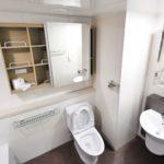 American Standard Cadet 3 – Full Toilet Review