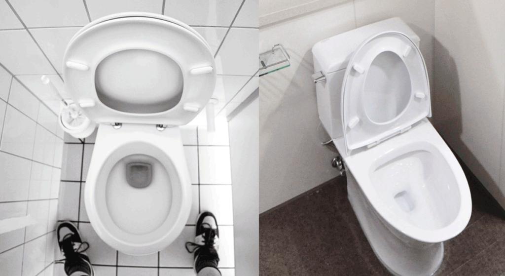Elongated toilet next to round toilet